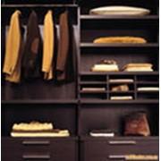 Пример гардеробных шкафов фото