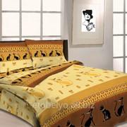 Комплект постельного белья 1.5 СПАЛЬНЫЙ БЯЗЬ B 18 фото
