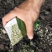 Услуга по подкормке растений минеральными и органическими удобрениями фото