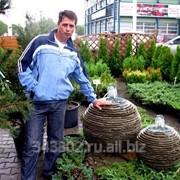 Создание садовых фонтанов фото