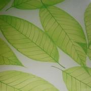 Триплекс с декором - Листья зеленые фото