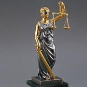 Услуги адвоката по административным делам фото