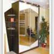 Изготовление встроенных шкафов-купе фото