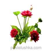 Цветы лотоса 50 см фото