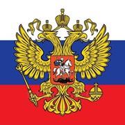 Импорт товаров в Россию фото