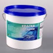 Краска водно-дисперсионная ВД-АК-101 фото