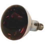 Инфракрасные лампы фото