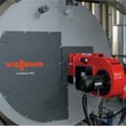 Kотлы для нагрева воды и парогенерации Viessmann фото