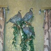 Чучело птицы фото