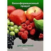 Биоинформационный продукт для растений фото