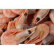 Морепродукты свежемороженые в ассортименте фото