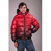 Куртка мужская зимняя. Арт.0165-01S фото