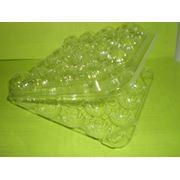 Пластиковых упаковок для перепелиных яиц фото