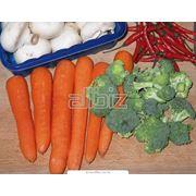 Сортировка свежих фруктов и овощей фото