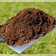 Мульчирование газона (пескование газона) фото