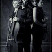Музыкальный коллектив фото