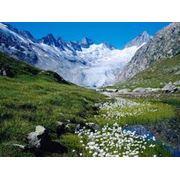Отдых в Швейцарии фото