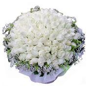 Цветы для невесты фото