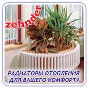 Радиаторы Zehnder фото