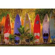 Фотообои на стену Серфинг Komar 8-902 Maui