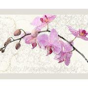 """Фотообои на флизелине """"Розовая орхидея"""" фото"""