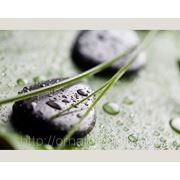 "Фотообои на флизелине ""SPA"" фото"