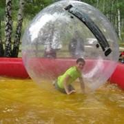 Аттракцион Водный шар фото
