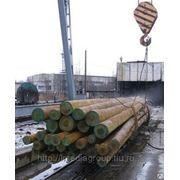 Деревянные пропитанные опоры лэп 6 м,8м., 11м Новосибирск фото
