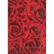 Плитка для стен Декор Роза красный фото
