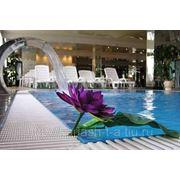 Отдых в Сочи, пансионат Сочи-Бриз отель фото