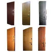 Двери металлические для квартир частных домов подъездов фотография