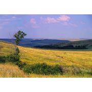 Охрана природных ресурсов фото