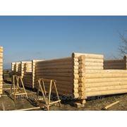 Лес кругляк Для строительство дома