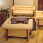 Диван офисный milos legno фото
