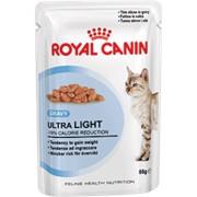 Ultra Light (в соусе) Royal Canin корм для взрослых кошек, Пакет, 12 x 0,085кг фото