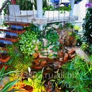 Зимние сады, оранжереи, цветники фото