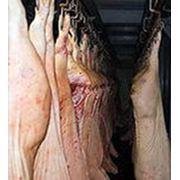 Мясо свинины полутуши охлажденное фото