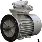 Взрывозащищенный электродвигатель АИМЛ63А2, АИМЛ71В2, АИМЛ90L2 фото