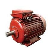 Электродвигатель 355 MВ8 200кВт фото