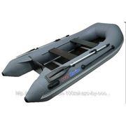 Лодка ПВХ ProfMarine PM 300 фото