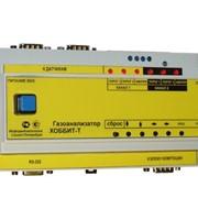 Газоанализаторы фтористого водорода (паров плавиковой кислоты) с креплением на DIN-рейку Хоббит-Т-HF фото
