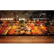 Овощные стеллажи фото