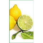 Лимонная кислота Китай фото