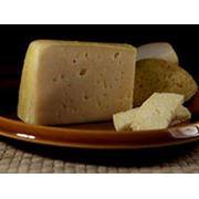 Полутвердые сорта сыра фото