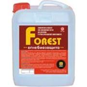 Антисептики для дерева Огнебиозащита Forest фото