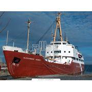 Осмотр судов и грузов фото