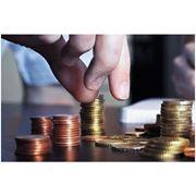 Управление инвестиционными проектами фото