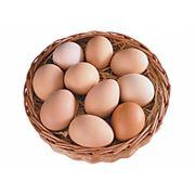 Яйцо куриное домашнее фото
