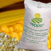 Кукурузные хлопья быстрого приготовления ТЕРРА-ГЕРКУЛЕС™ фото