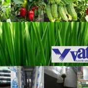 Профессиональная Тепличная пленка VatanPlastik (Турция) фото